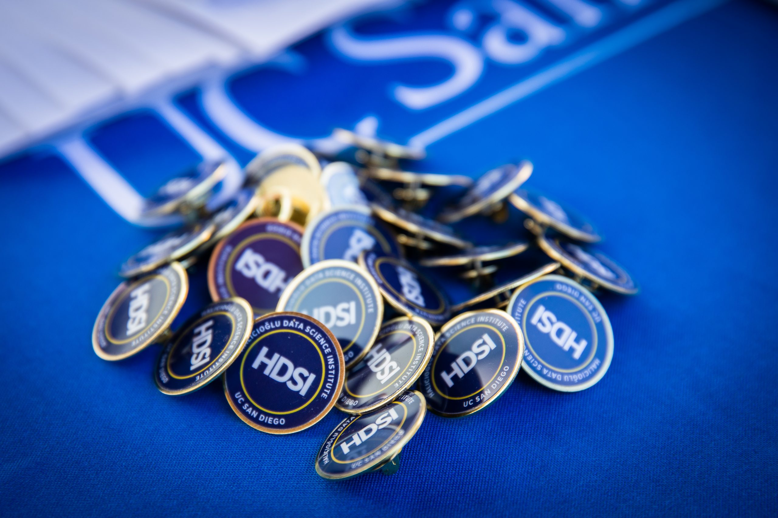 Photo of HDSI Lapel Buttons